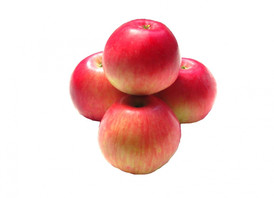 Pomme bicolore Akane Fr BIO (très petit calibre 80 g et +)