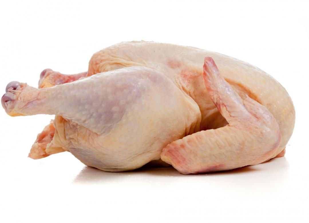 Poulet Halal (1.5 à 1.6 Kg)