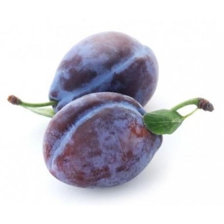 Prune Quetsche