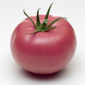 Tomate ancienne coeur de boeuf rose Fr.  BIO