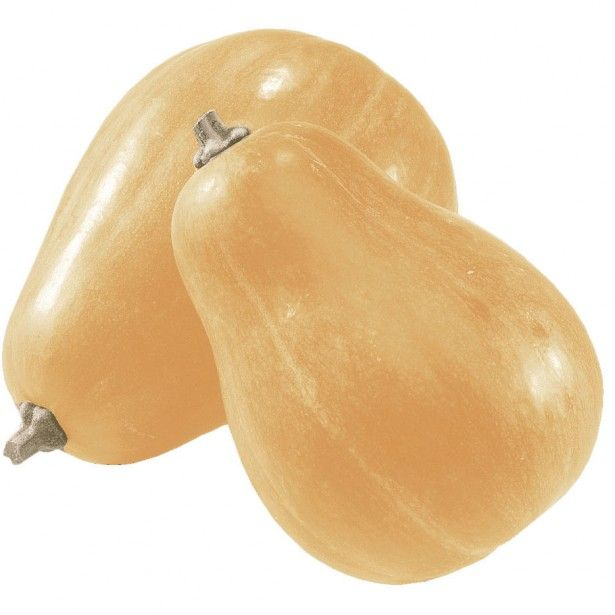Courge sucrine du berry BIO (gros cal. de 1.2 à 1.6 kg)