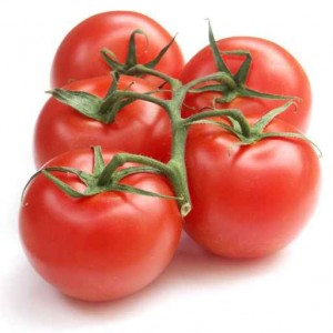 Tomates ronde grappe Esp. ou It. BIO