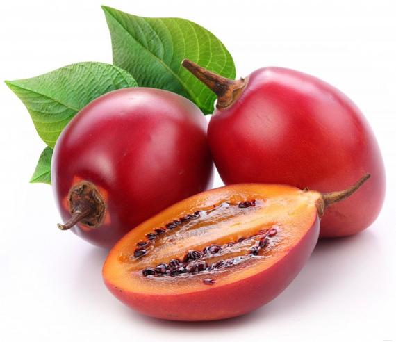Tomate en arbre/tamarillo Pérou BIO